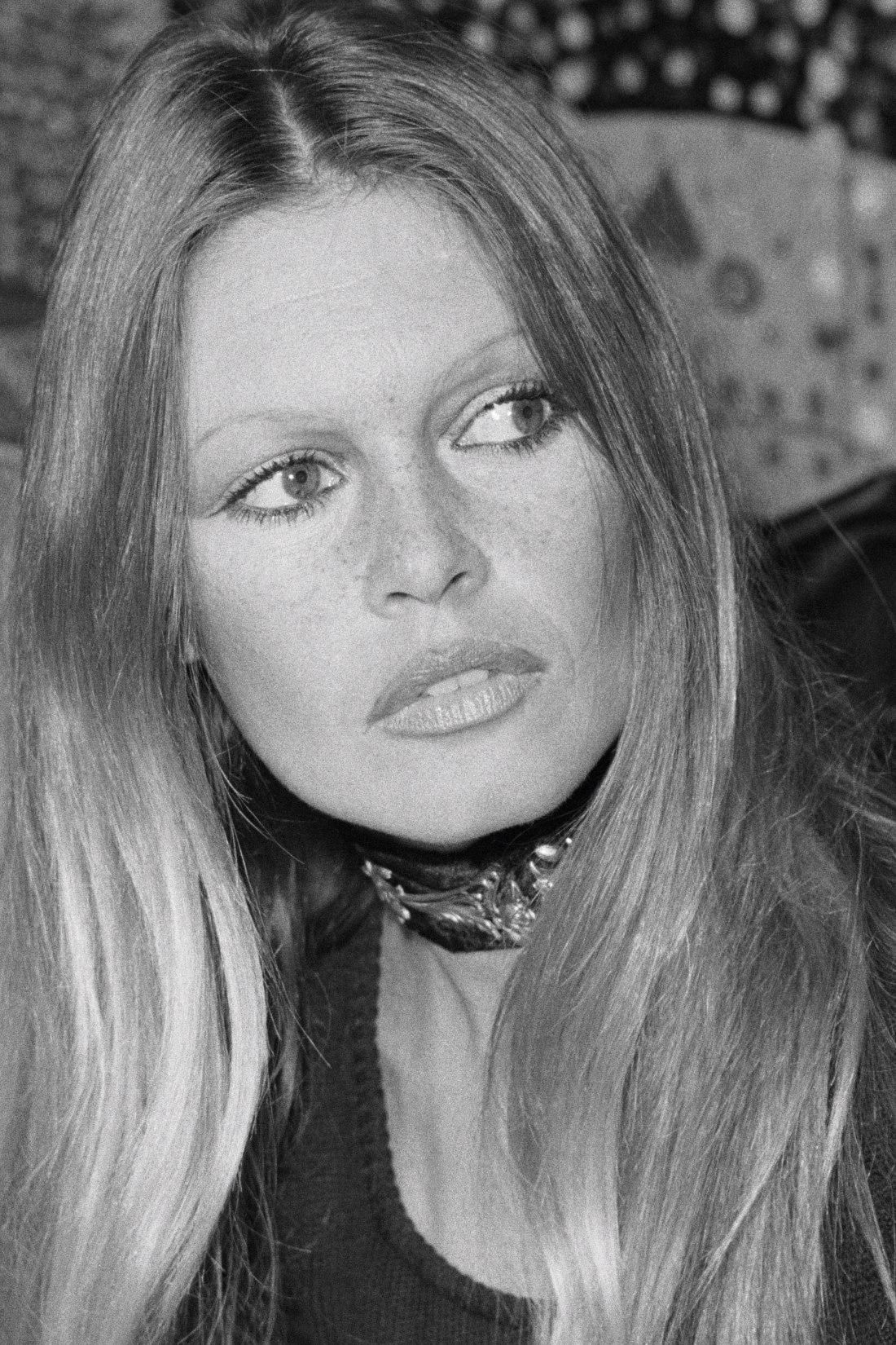 Bardot Portrait